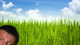 Download В траве сидел братишка Mp3 and Videos