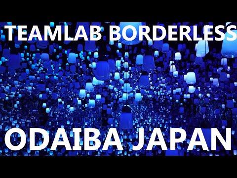 The TeamLab Borderless Experience