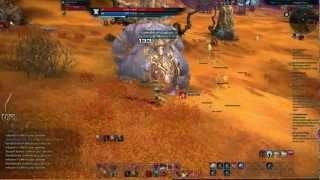 Tera: Warrior -Reckless- BAM Solo (lvl 23 Kumas) HD