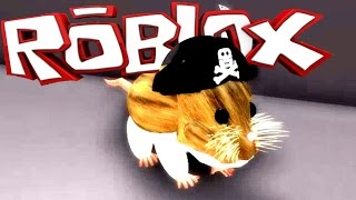 The Hamster of My Dreams! - Hamster Simulator(ROBLOX)