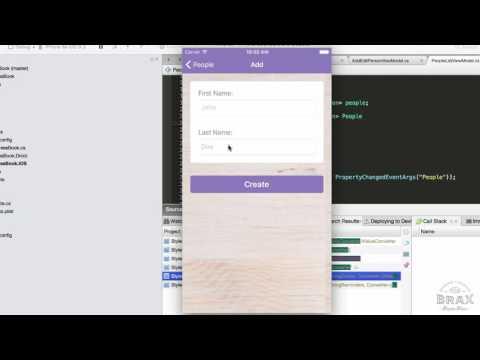 Brax: Master Your Xamarin Realm DB - Intro