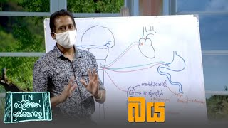 ITN Television Iskole - (2021-09-04) | ITN Thumbnail