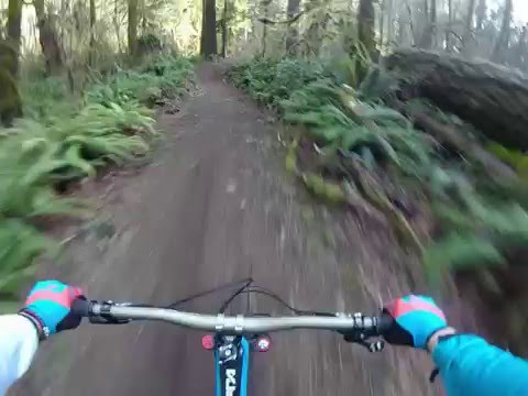 Banzai Downhill trail (Blackrock Mountain Bike Park) Feb 2016
