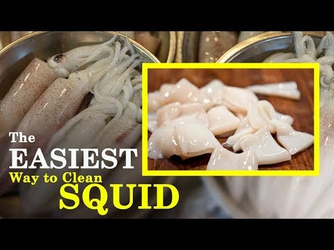 How to easily cut & clean Squid or Calamari ?