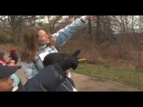 It's My Park: Bird Watching in Van Cortlandt Park