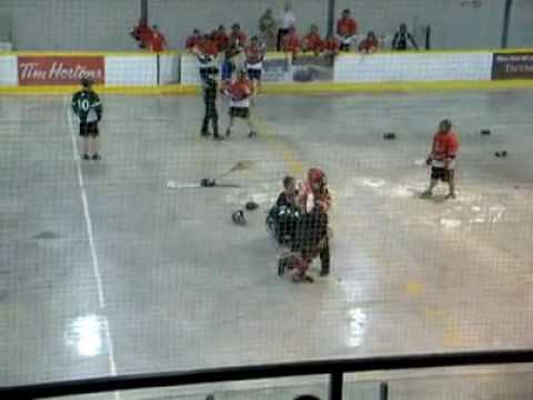 Lacrosse Goalie fight