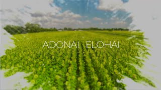Paul Wilbur - Adonai Elohai (Lyric Video)