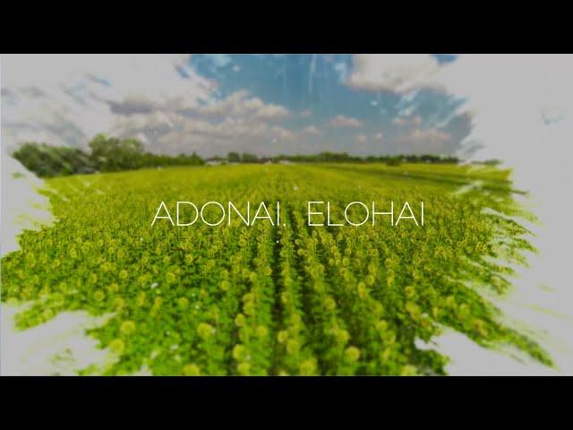 paul-wilbur-adonai-elohai-lyric-video-integritymusic