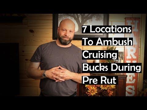 How To Hunt Cruising Bucks Pre Rut