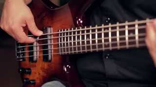ibanez gsr205sm 5 string electric bass demo