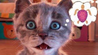 Play Fun Pet Cute Kitten Care Gameplay - Little Kitten Preschool Fun Learning Games For Children