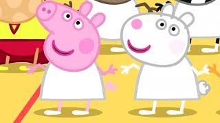 Peppa Pig Português Brasil 🏀 AULA DE GINÁSTICA | Peppa Pig
