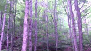 Solo Backpacking/Fly Fishing Cranberry Backcountry