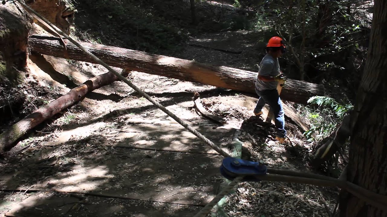 Rigging and Hauling Big Tree's Uphill