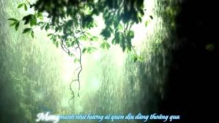 Mong Manh Tình Về - Acoustic