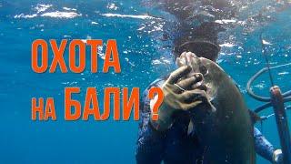 Индонезия с нуля. Подводная охота.