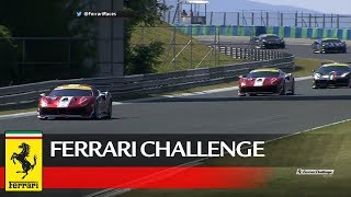 Ferrari Challenge Europe - Budapest 2017, Coppa Shell Race 1