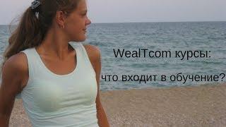 WealTcom курсы. Что входит в обучение?