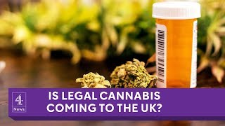 The Home Secretary has ordered a review into the medicinal use of c...