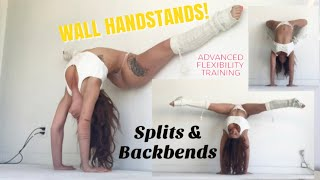 Wall Handstand Variations! *Core tips & strength techniques*