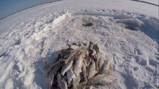Рыбалка в 40 Клюет ли плотва