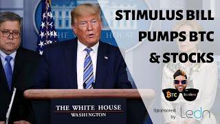 Bitcoin and Equities Pump With Stimulus Bill | FDIC Discourages Bank Runs | Mass Surveillance