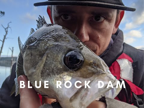 Blue Rock Dam | Surface Bass Breakfast And Exploring