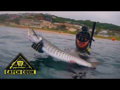 Crazy Shark Encounter While Spearfishing In KZN, South Africa - Catch Cook
