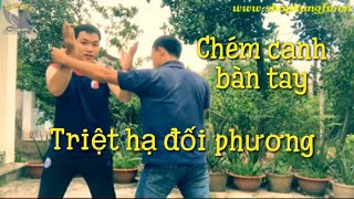 Võ Tự Vệ #21 | Học võ tự vệ hiệu quả | Hoc vo, Đòn chém | Học võ Kung Fu, Tu tap vo tai nha