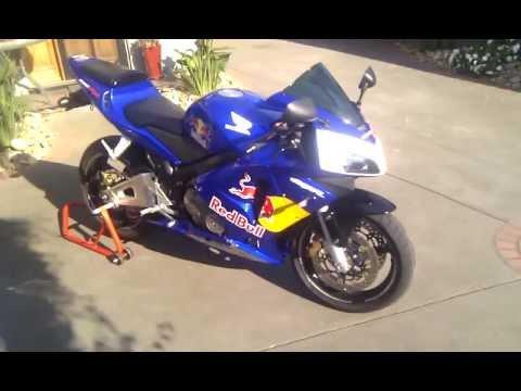 Red Bull Honda Cbr600rr Walk Around Youtube