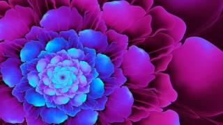 Chakra Meditation Music : Crown Chakra Healing & Balancing Meditation Music