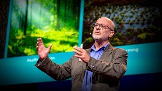 Can seaweed help curb global warming?   Tim Flannery