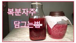 복분자,복분자주 담그기, 복분자효능,전통방식으로 복분자…