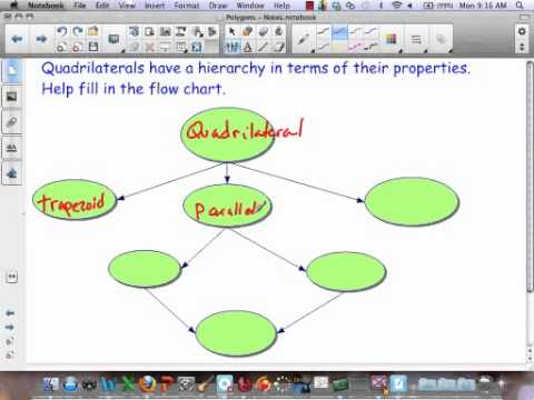 Quadrilateral Hierarchy