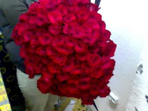 101 роза 60см это фантастика , девушка упала от радости