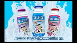 TV Commercial Calpico Mini