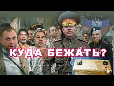 Куда бежать путинским ихтамнетам