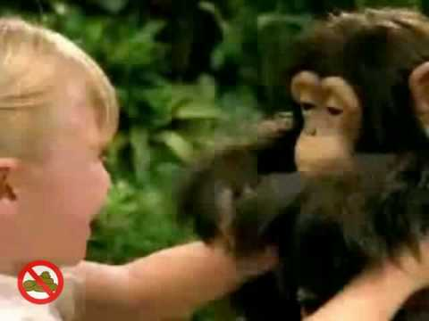 Furreal Cuddle Chimp And Newborn Chimp Commercial Youtube