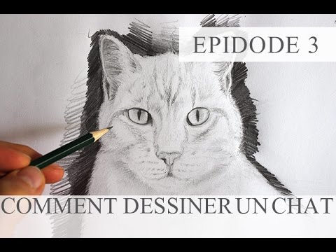 Comment dessiner un chat technique simple tutoriel episode3 youtube - Un chat dessin ...