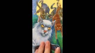 """Обзор книги """"Коты-воители. Герои племён"""""""