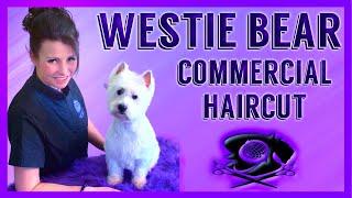 2020 Best Westie grooming how to easy to follow stepbystep tutorial