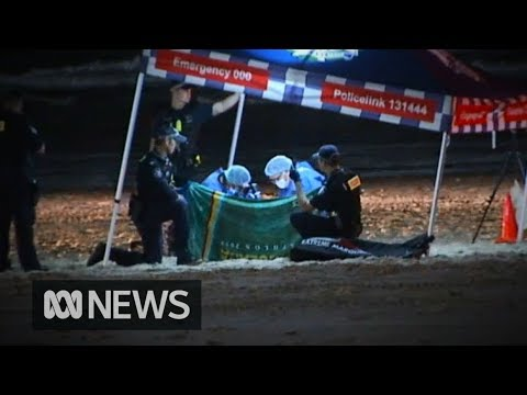 Nine-month-old girl found dead on Surfers Paradise Beach on Gold Coast | ABC News