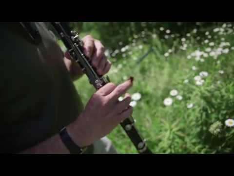 David Rothenberg Jams with the Cicadas
