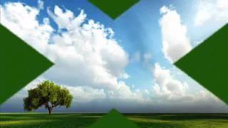 Vandana Srivastav Instrumental (Hawain Guitar)-NA JAA KAHIN AB NA JAA