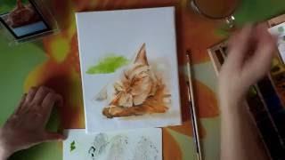Картина акварелью. Сон рыжего кота.