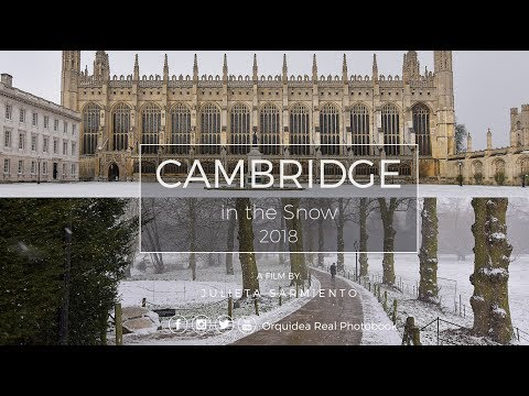 University of Cambridge in the snow 2018 - ORP (Nikon D5500 | Tokina 11-14mm f/2.8)