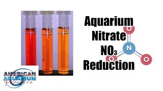 Aquarium Nitrate Reduction | Ammonia Nitrite Nitrate