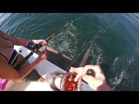 Deep Sea Fishing Orange Beach 2016
