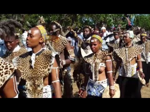 The Road to Judea - The Shembe in Zululand