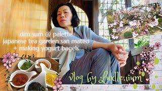 Vlog by Luxllenium   Dim Sum @ Palette   Japanese Garden San Mateo   Making Yogurt Bagels